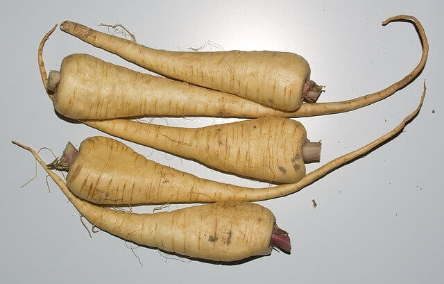 Five whole parsnips on white background