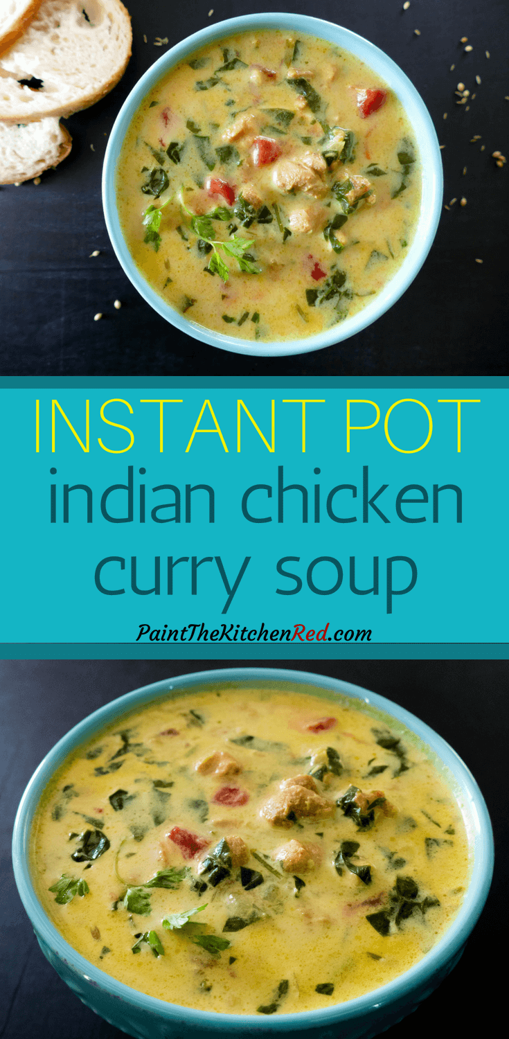 Instant Pot Chicken Curry Soup - Paint The Kitchen Red