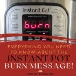 Instant Pot Burn Message Everything you Need to Know