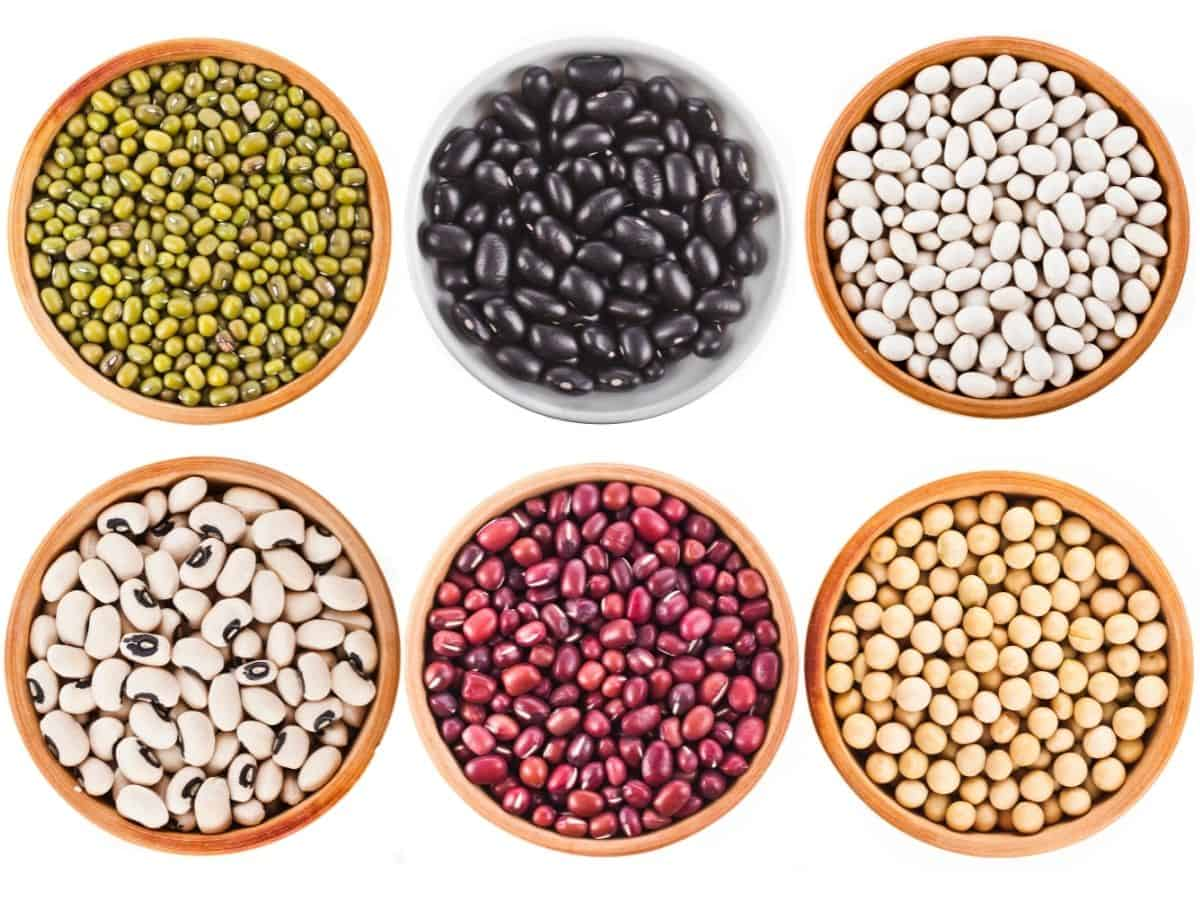 different types beans in 6 brown bowls