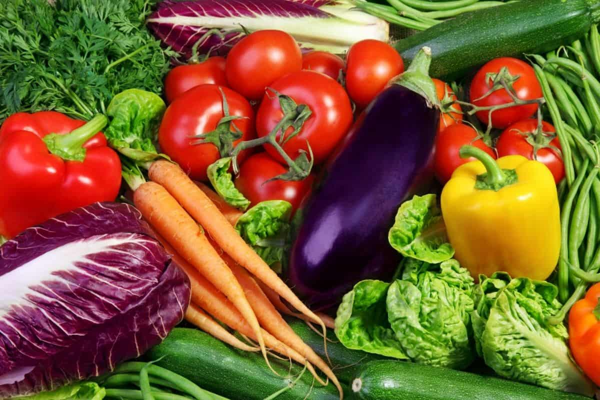 cabbage, peppers, carrots, tomatoes, eggplant, beans and other vegetables